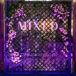 mixed-01